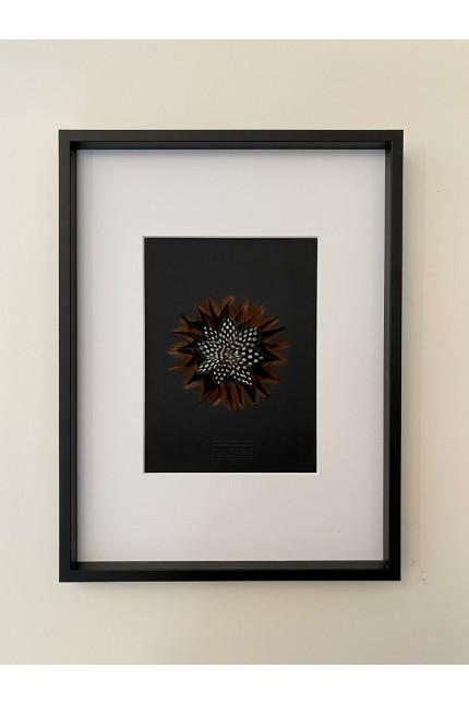 Cadre Plumes : Flower