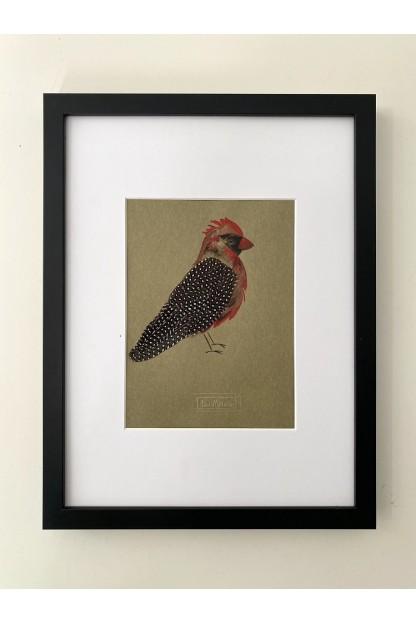 Cadre Plumes : Bird