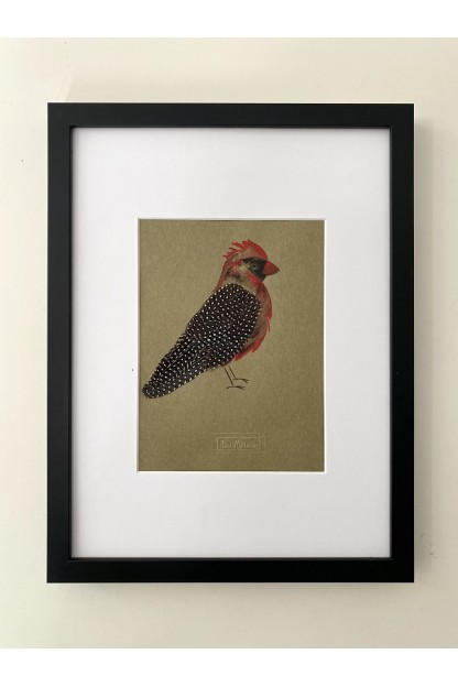 Feather Frame : Bird