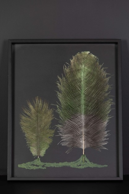 Feathers Frame : Forest Charbon