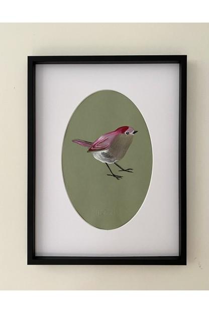 Feathers Frame : Throated Bird