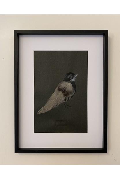 Cadre Plumes : Birdie
