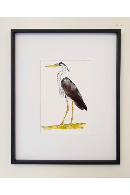 Feathers Frame : Heron