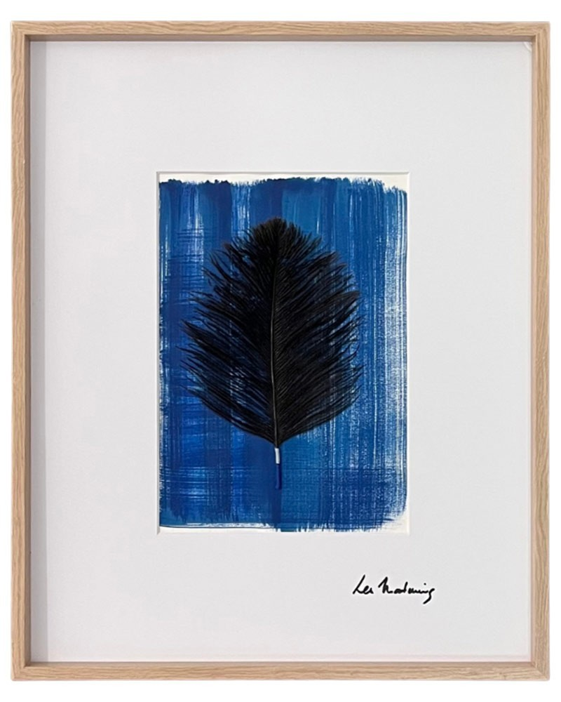 Feather Frame : Mbuni